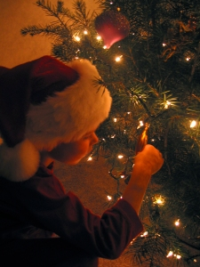 Matteo and Christmas tree