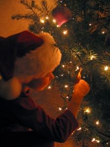 Matteo and Christmas tree