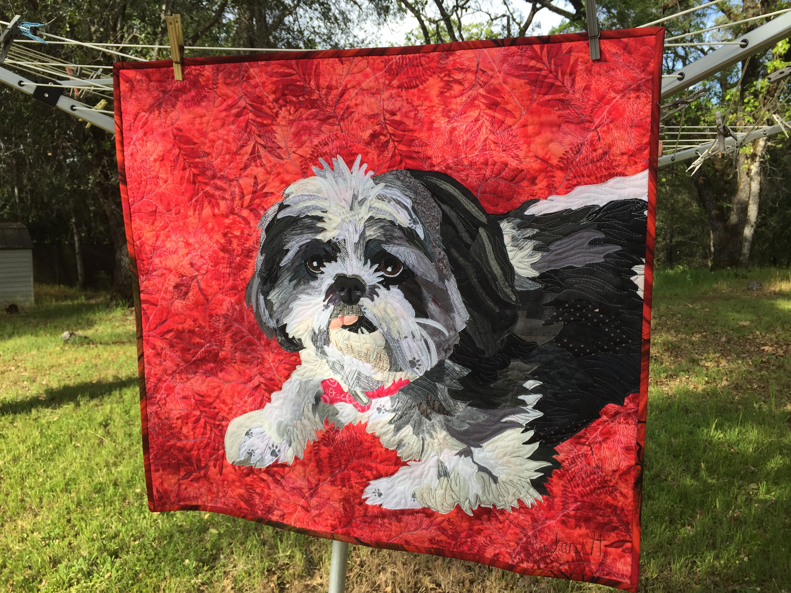Pet Portrait Fabric collage Jane Haworth